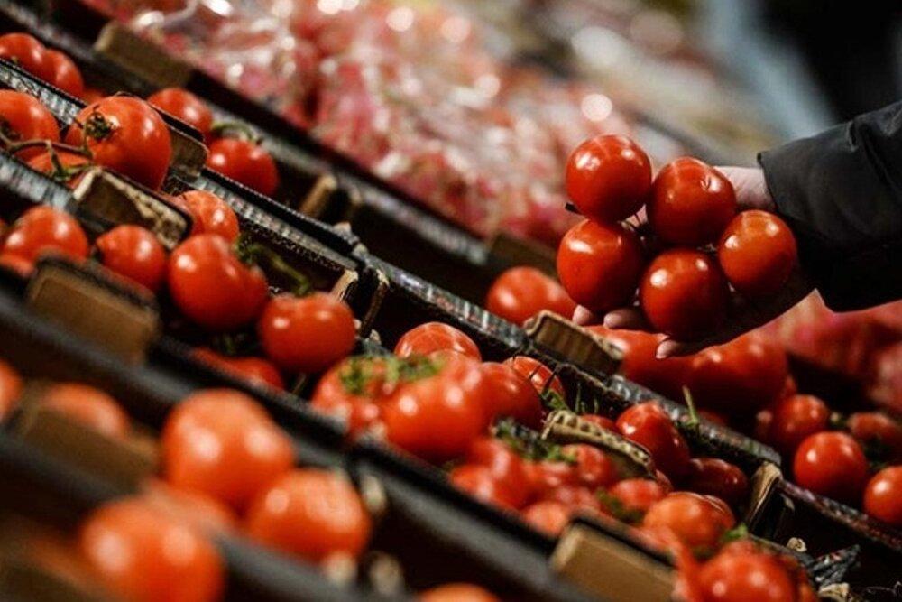 کارخانه رب اسدآباد ظرفیت دریافت و جذب گوجهفرنگی غرب کشور را دارد