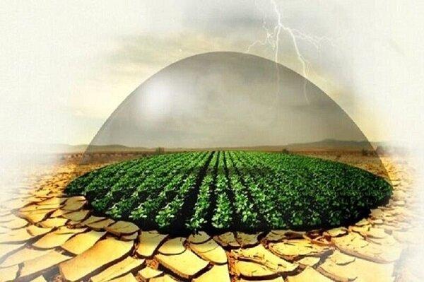 بیمه کشاورزی از ریسک مخاطرات میکاهد؛ چتر حمایتی نیازمند پوشش بیشتر