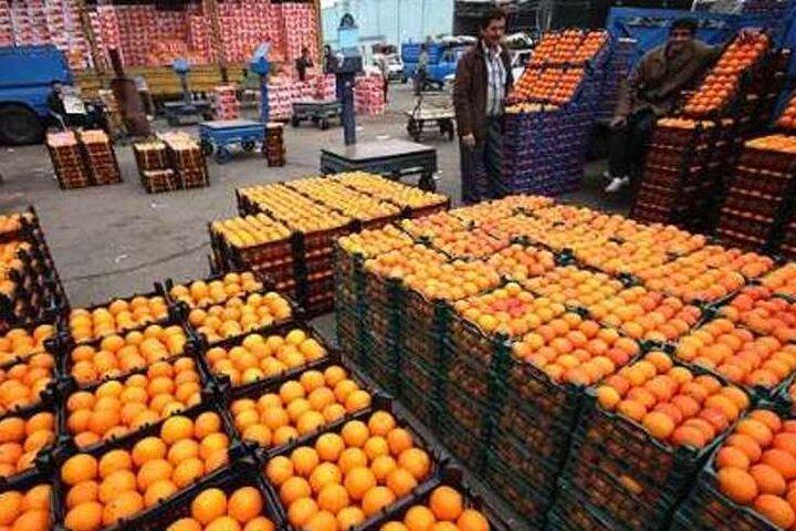 عیدانه کارگروه تنظیم بازار؛ افزایش نرخ پرتقال در مهد مرکبات