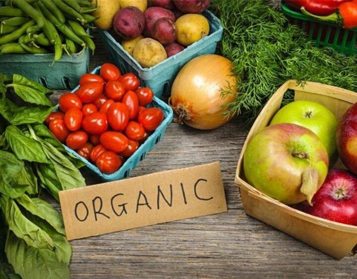 ۳۰۰ نوع محصول ارگانیک در کشور تولید میشود / اروپاییها مشتری ثابت محصول ارگانیک ایران