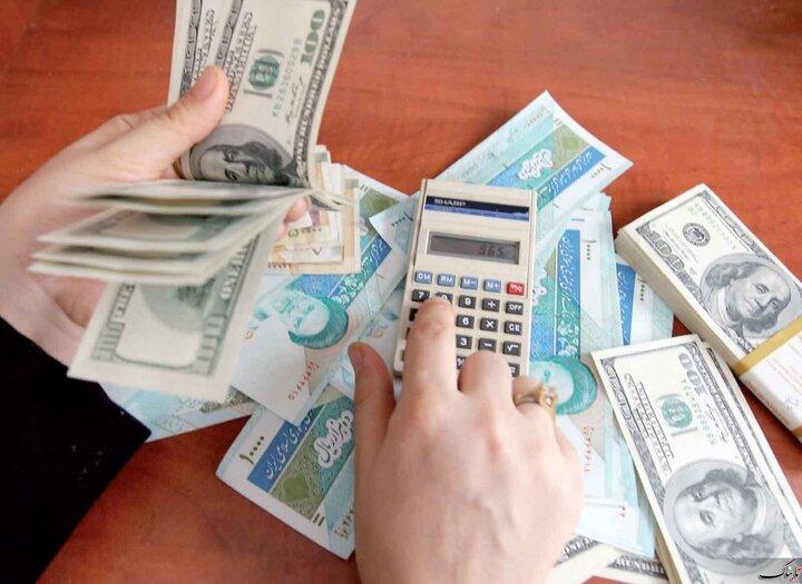 داستان ارز در طول یک سال سخت اقتصادی