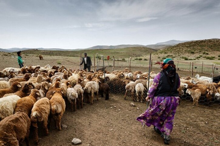 بودجه پروژه های تأمین آب عشایر در دماوند ۲ میلیارد تومان برآورد شده است
