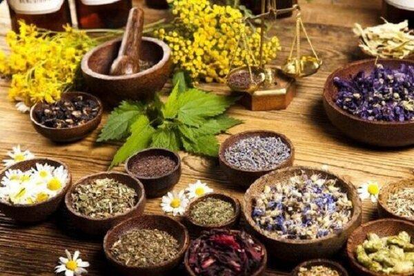 «گیاهان دارویی» طلای سبزی در کویر تشنه قم دور از چشم سرمایهگذاران