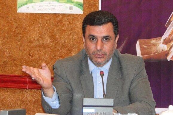 ارائه خدمات بیمه اجتماعی به فعالان حوزه فرش گلستان