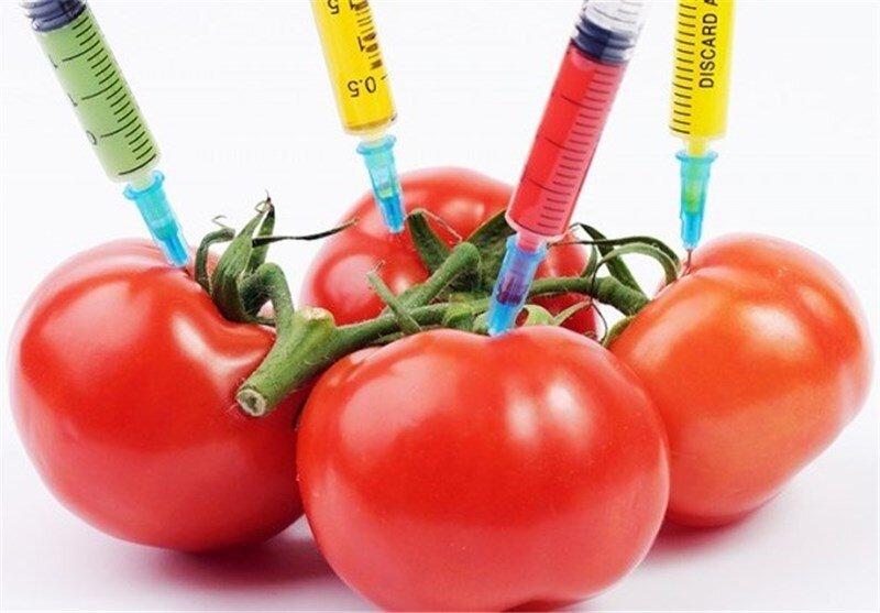 مزایا و معایب محصولات تراریخته و ایمنی زیستی