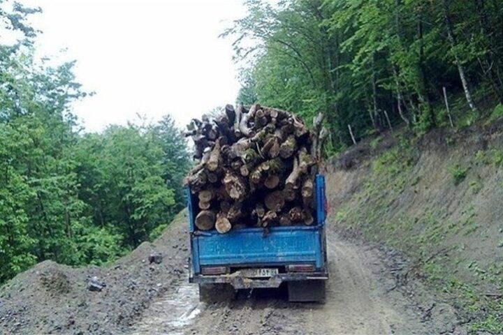 قاچاق چوب در استان زنجان  ۳۵ درصد افزایش دارد