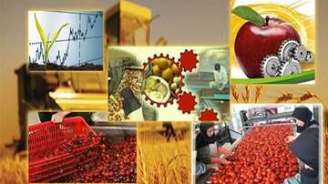 ضرورت توجه به صنایع تبدیلی و کاهش ضایعات محصولات کشاورزی و باغی