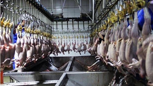 سریال بلاتکلیفی کشتارگاه صنعتی ایلام پایانی ندارد