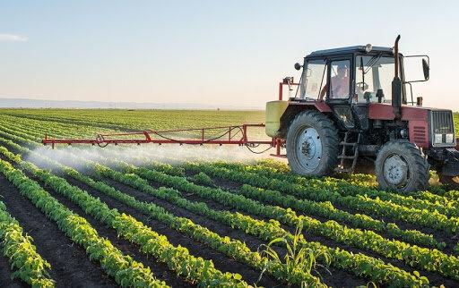 اتاق اصناف کشاورزی راهاندازی میشود