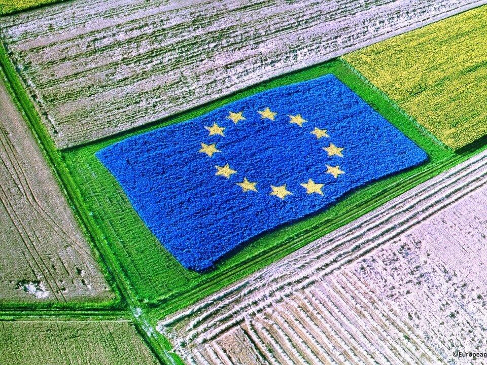سناریوهای کشاورزی اتحادیه اروپا در ۱۰ سال آینده