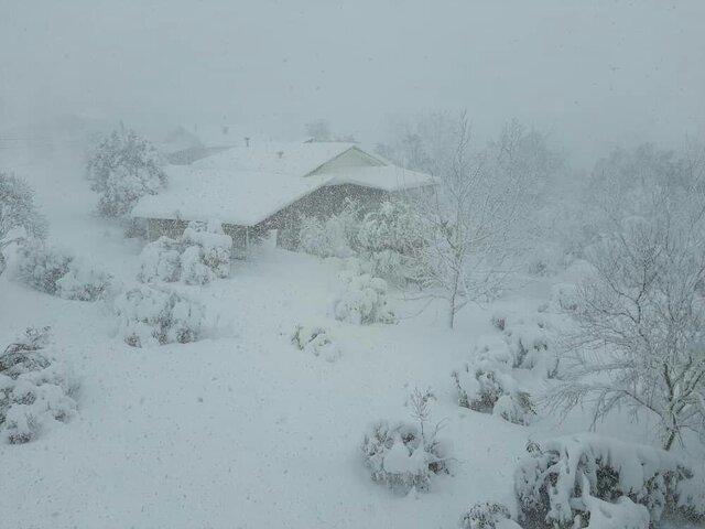 ارتفاع ۷۳ سانتیمتری برف در مازندران/ سیلاب نداشتیم