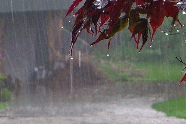 بارندگیها در زنجان ۴۹ درصد کاهش دارد/ پلمب ۴۰۰ حلقه چاه غیر مجاز