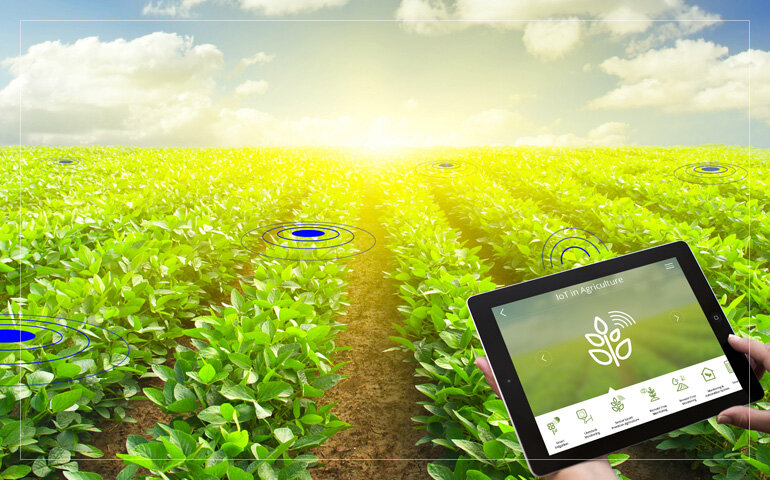 جای خالی داده های بزرگ در بهره وری تولیدات کشاورزی