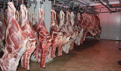 زمزمه کمبود گوشت در کرمان پیچید/ مسئولان: اجازه افزایش قیمت نمی دهیم