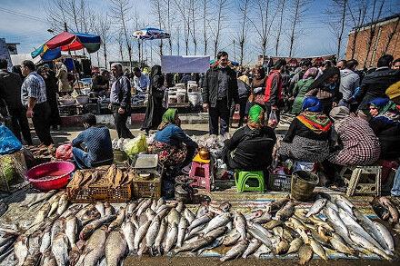 ۱۶۵۰ تن برنج و گوشت در مازندران عرضه میشود/ آغاز توزیع اقلام عیدانه در بازار