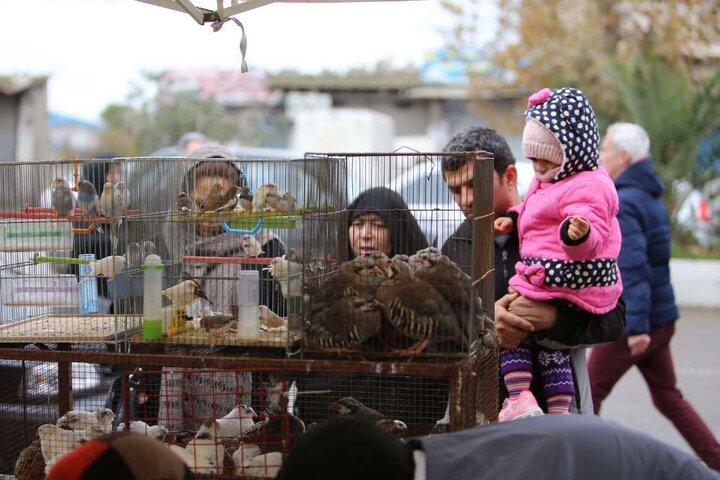 بازارهای مازندران پنجشنبه و جمعه تعطیل است