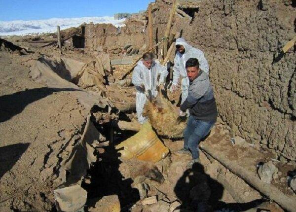۲۱۰۰ راس دام سبک در دو روستای زلزله زده آذربایجان غربی زیر آوار مانده اند