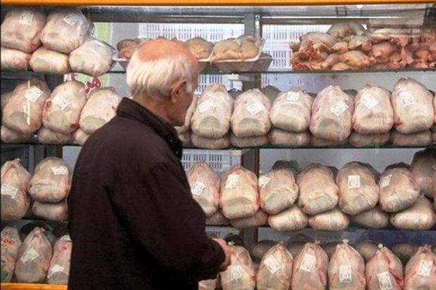 ۱۱۵ تن مرغ منجمد در بازار کردستان توزیع شد