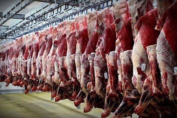 سالیانه ۵.۵ هزار تُن گوشت قرمز دام سبک در استان تهران تولید می شود