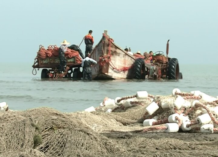 ۹۰ درصد ماهیان خزری کوچ رود هستند/ اجرای طرح حفاظت