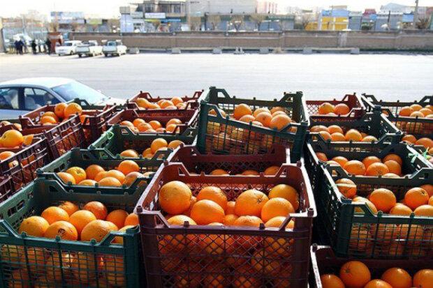 اولین پایانه صادرات محصولات کشاورزی کشور افتتاح شد