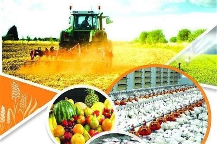 لزوم برنامهریزی برای جلوگیری ازهرگونه خلل در روند تولید و صادرات کشاورزی