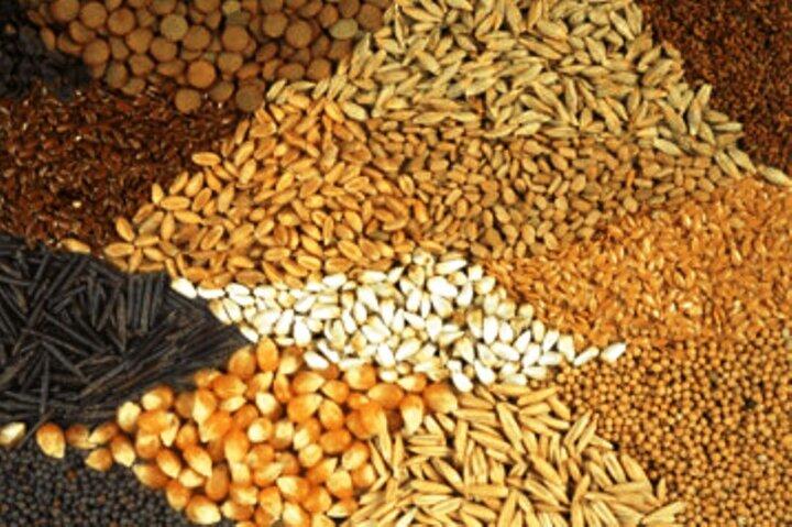 قیمت انواع نهاده های دامی و محصولات کشاورزی در ۲۹ آذر ۱۳۹۹