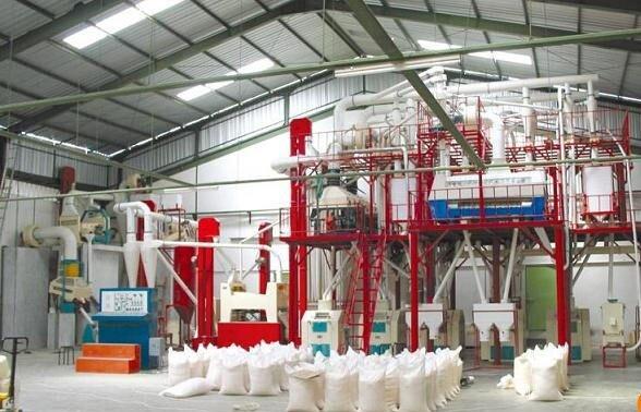 فعالیت ۳۲ کارخانه تولید آرد در البرز/ تولیدکنندگان در زمینه صادرات حمایت نمی شوند