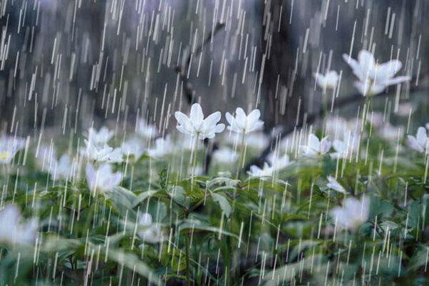 بارش شدید تگرگ و باران در تبریز