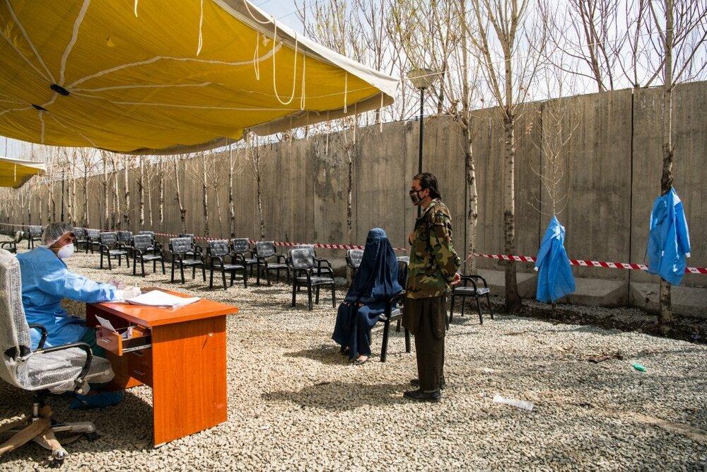 هراس در هرات؛ کرونا افغانستان را به زیر خط فقر می برد