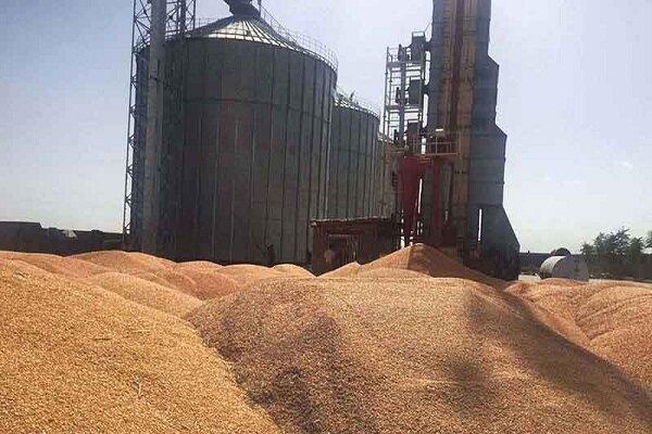 ۱۱۰ هزار تن به ظرفیت سیلوهای قزوین اضافه میشود