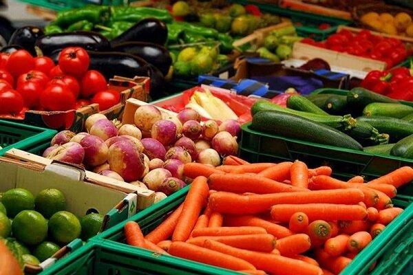 ۳۵۰ هزار تن انواع محصولات کشاورزی در شهرستان طارم برداشت می شود