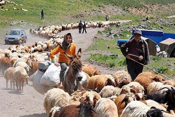 عشایر استان سمنان ۱۷ هزار تن شیر و لبنیات تولید کردند