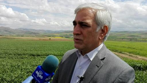 اقدامات وزارت جهاد برای مقابله با تاثیرات کرونا بر محصولات زراعی