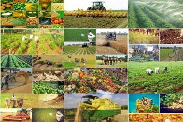 مثلث تکنولوژی، سرمایهگذاری و بازار فروش، ضرورت جهش تولید در کشاورزی