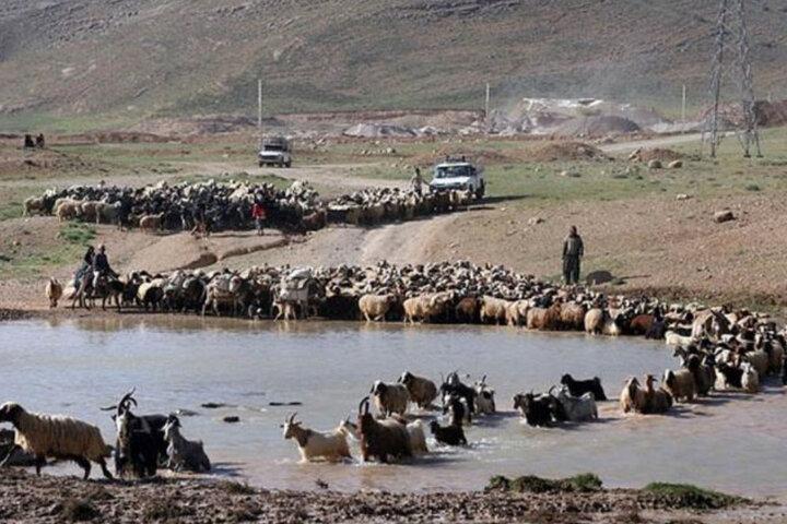 خسارت سیل به ۴۰ روستای رابر/ راههای روستایی بسته شد