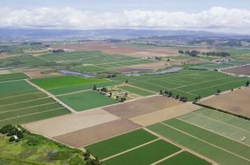 ۳۸۲ هزار هکتار از اراضی ملی و کشاورزی رفع تداخل شد