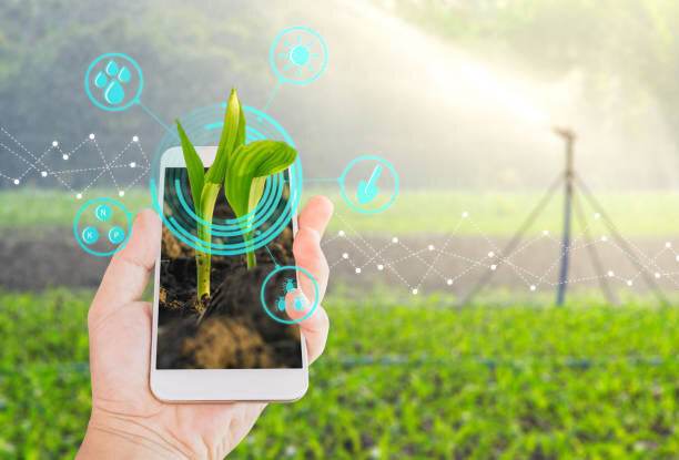 سبک جدید فروش محصولات کشاورزی در پساکرونا؛ از تولید به مصرف