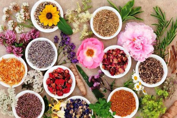 گیاهان دارویی کهگیلویه و بویراحمد قربانی خام فروشی
