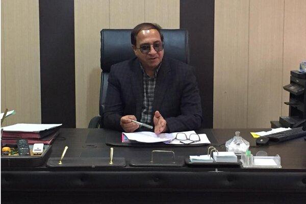 ۴۰۰ نفر شتر از بازارچههای مرزی وارد سیستان و بلوچستان شد