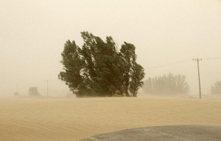 خسارت ۱۳۰ میلیارد تومانی خراسان رضوی ارمغان کانونهای بادی