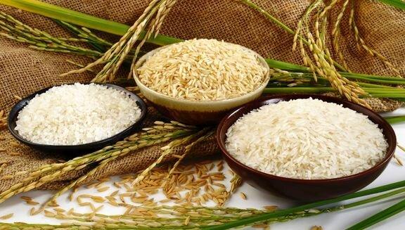 امروز؛ ترخیص ۱۳ هزار تن برنج دپو شده در گمرک