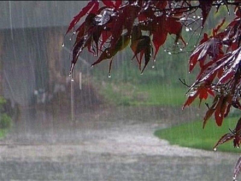 هشدار بارش شدید باران و برف در استان فارس/ کشاورزان مراقب باشند