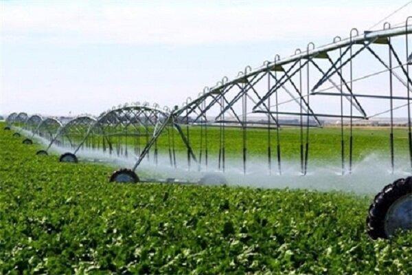 البرز ظرفیت افزایش ۳ برابری محصولات کشاورزی را دارد