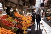 افزایش ۲ برابری قیمت میوه در کشور| کمبودی برای بازار شب عید نداریم
