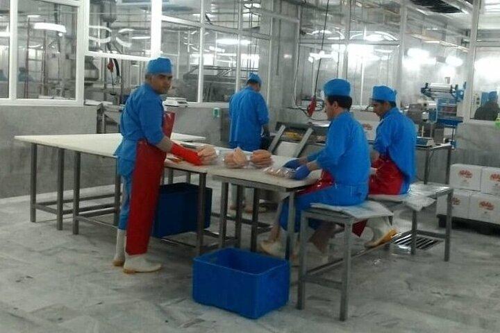 کمبود صنایع تبدیلی از مشکلات تولیدکنندگان خراسان شمالی است
