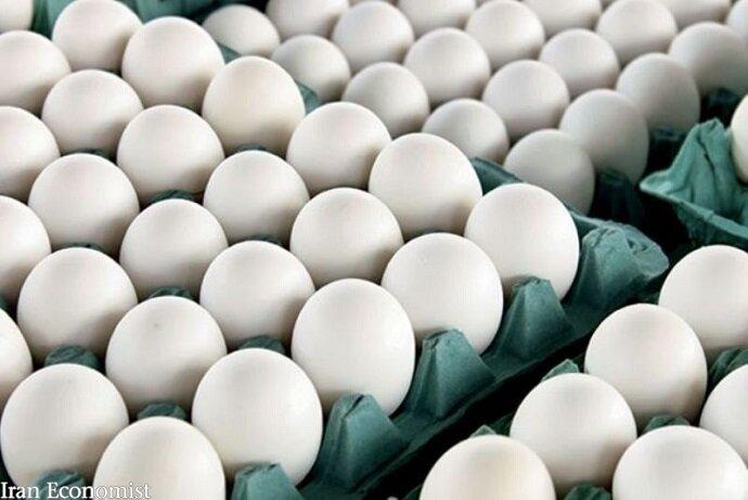 متوقف کردن صادرات تخم مرغ تا زمان متعادل شدن قیمت