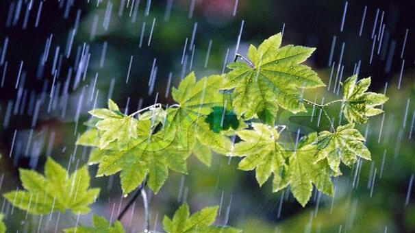 سامانه بارشی وارد ایلام میشود