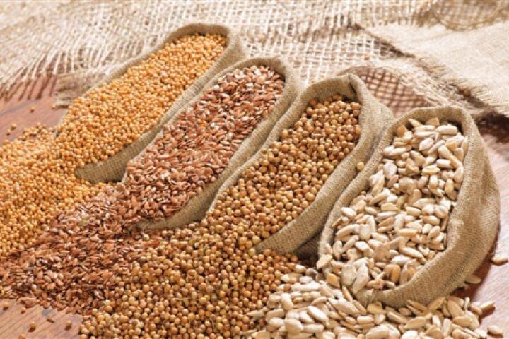 لزوم حذف ارز دولتی از واردات دانههای روغنی