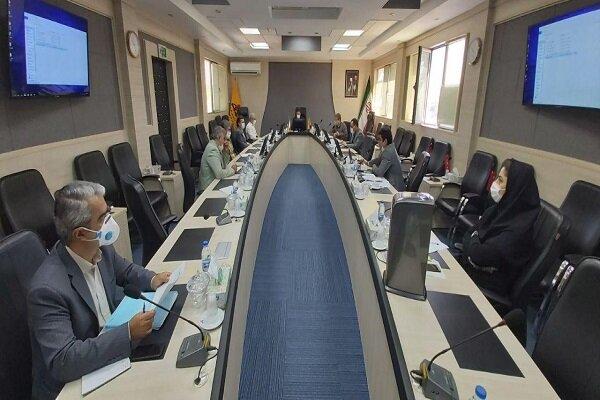 گازرسانی به ۵۴۰ واحد صنعتی مشمول مصوبه شورای اقتصاد در کردستان